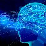 飲酒で脳が委縮して記憶力が落ちてもも禁酒効果で回復できるらしい!!