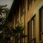 【実話】怖い話(短い)『専門学校の夜』